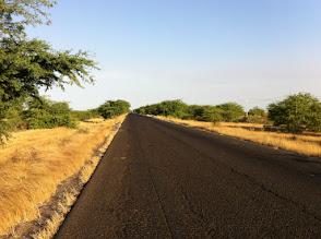 Photo: Typical Senegal road, savannah