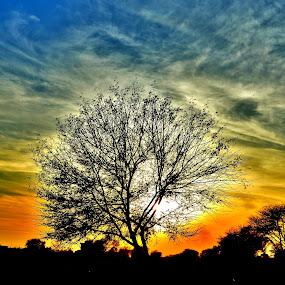 Clouds DurinG SUNSET. by Arsalan Sandhila - Landscapes Sunsets & Sunrises (  )