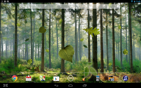 Forest Live Wallpaper v1.2