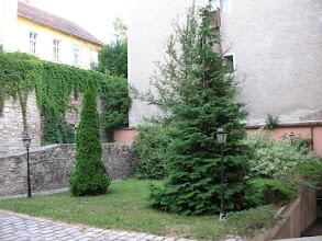 Photo: Belső udvar
