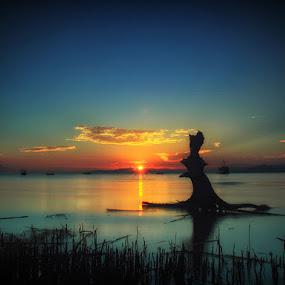 Diintip Mentari by Marcell Boli - Landscapes Sunsets & Sunrises