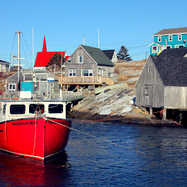 In the Harbour by Lena Arkell - Transportation Boats ( colour, water, peggy's cove, houses, red, blue sky, harbour, cove, boat,  )