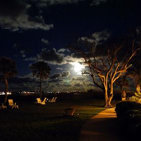 Super Moon Over Bermuda by David Clare - Landscapes Cloud Formations ( moon, super moon, grotto bay, night, bermuda,  )