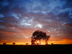 Photo: Sonnenaufgang auf dem Weg nach Goiânia