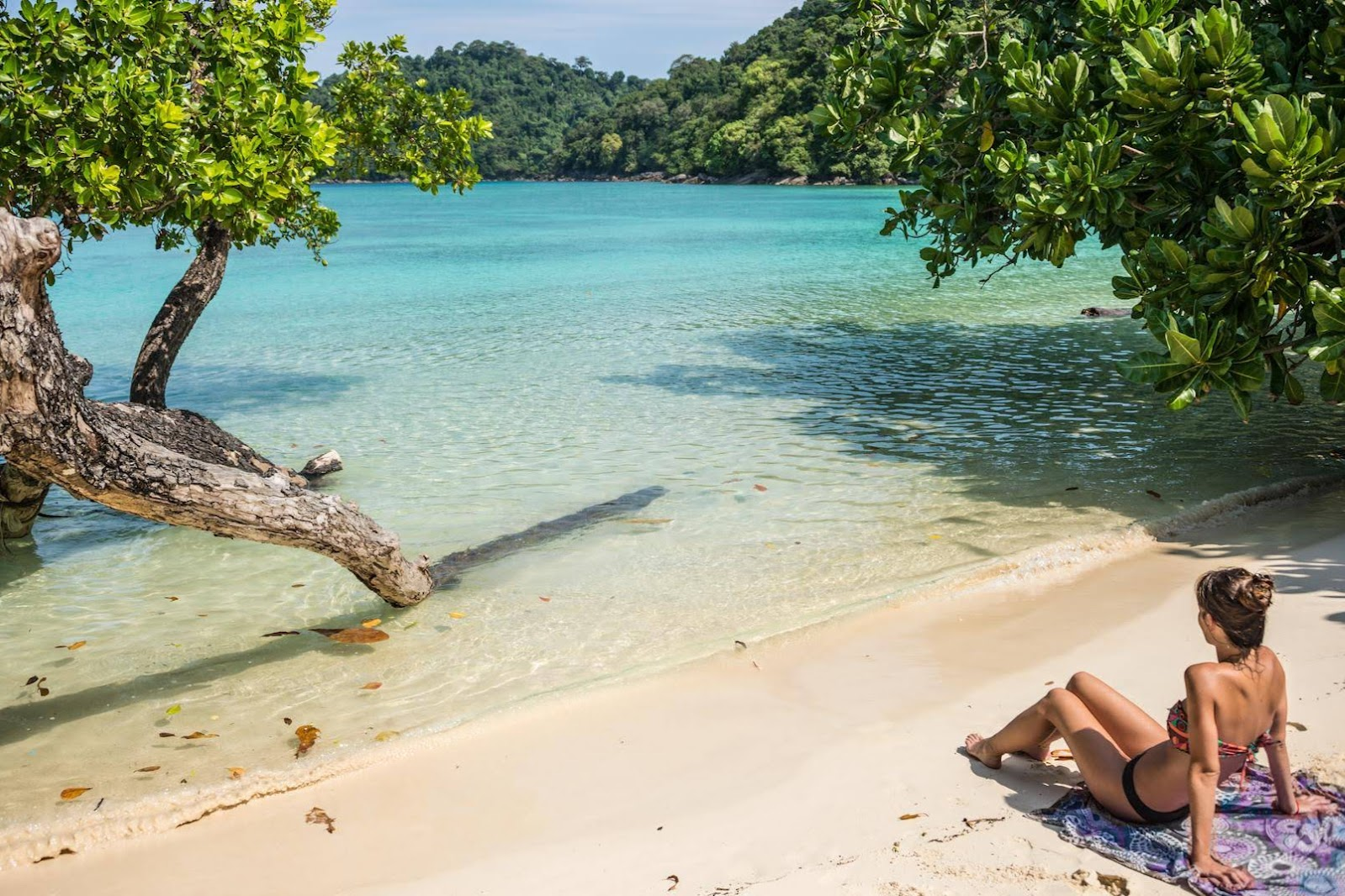 Snorkel Tour to Surin Islands by Fantastic Similan Travel from Phuket