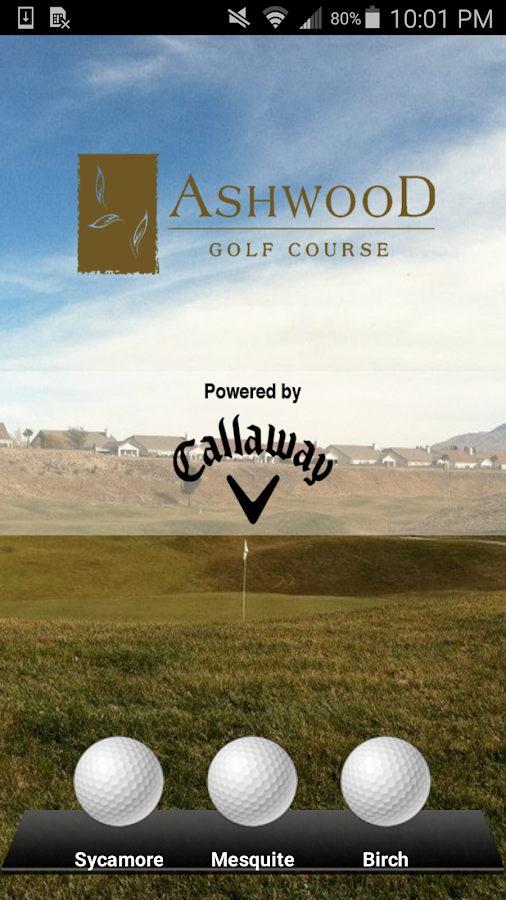 Ashwood Golf Course- screenshot