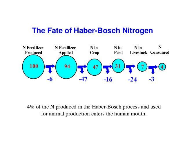The Fate of Haber-Bosch Nitrogen  N Fertilizer  Produced  N Fertilizer  Applied  N in  Crop  N in  Feed  N in  Livestock  ...