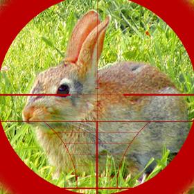 снайпер охоты на кроликов 3d