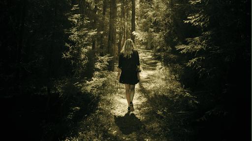 randonnées pedestres se promener dans les vosges