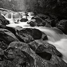 cascades at bull pen by Steven Faucette - Black & White Landscapes ( black and white, cascades, north carolina )