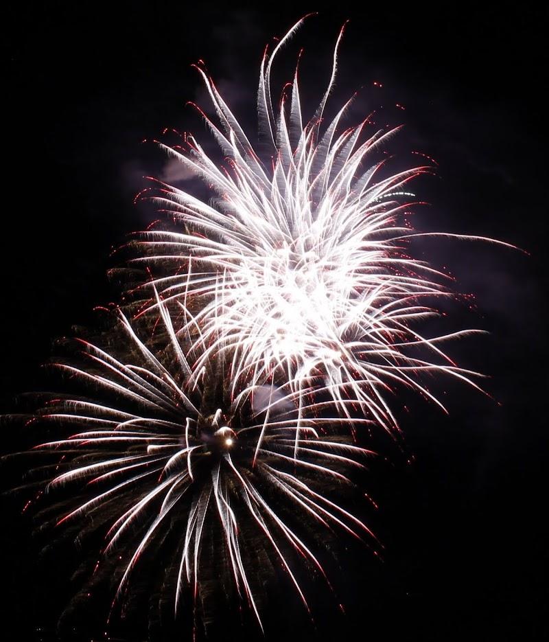 Fiori d'artificio di mirco_gavioli