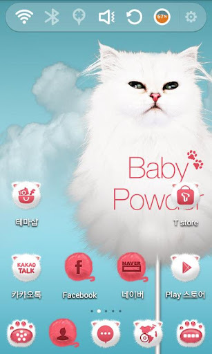 Elegant Persian Cat Theme