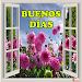 Frases De Buenos Días APK