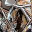Harley-Davidson by Jean-marc Payet - Transportation Motorcycles ( harley davidson, transport, moto, chrome, reflet, reflect )