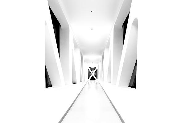 X di Karasu_Sora