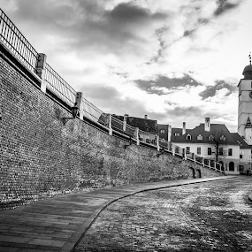 The Tower by Nitescu Gabriel - Buildings & Architecture Public & Historical ( building, tower, sky, beautiful, bw, romania, road, architecture, cityscape, city,  )