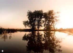 Photo: This Dawn Mist