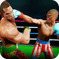Rage Boxing : Free Style Boxing Fight APK