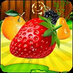 Fruit Crush 2016 Icon