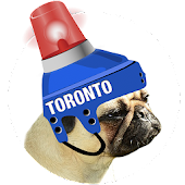 Toronto Hockey Photo Editor