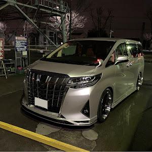 アルファード AGH30W G 2019年式のカスタム事例画像 Ryunosukeさんの2020年01月11日06:17の投稿