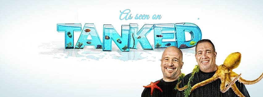 Aquarium Headquarters Dallas TX Featured on Tanked