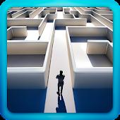 Labyrinth 3D 2016