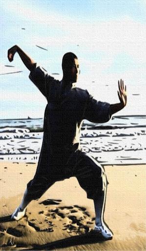 太極拳を学びます