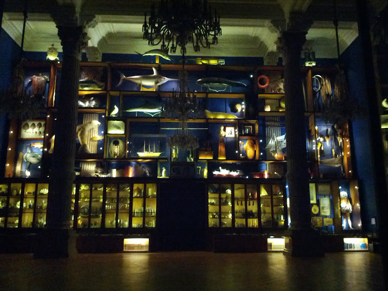 Photo: World's largest Marine Curio Cabinet in the room outside where the Liquid Galaxy is after hours.
