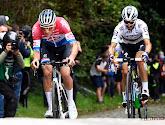 Alaphilippe draait de rollen om en gaat Van der Poel dit jaar wél vooraf in Brabantse Pijl!