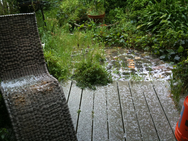 Photo: Early 2010 - The SF Mother of all Hail Storms: It only lasted 15 minutes or so but briefly left the area looking like a light snow. It was very cool! This picture shows the sheer amount of overgrowth... you can just barely see the round planter that would later hold the fire bowl. Sheesh!