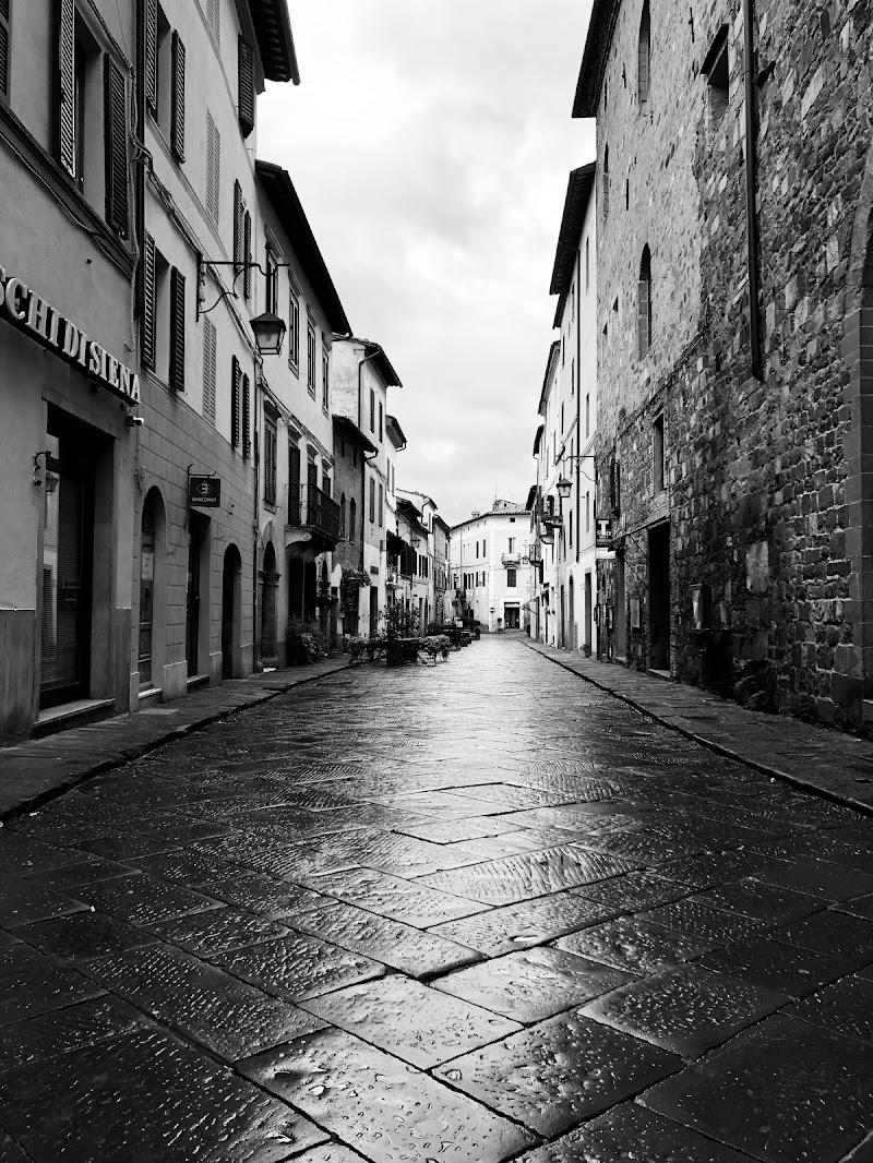 Montalcino...tra Pioggia e Vino. di federica_angioloni