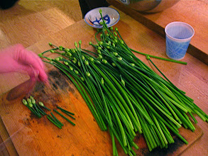 Photo: cutting chive blossom stems
