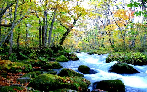 les Dlaždice Skládačka - náhled