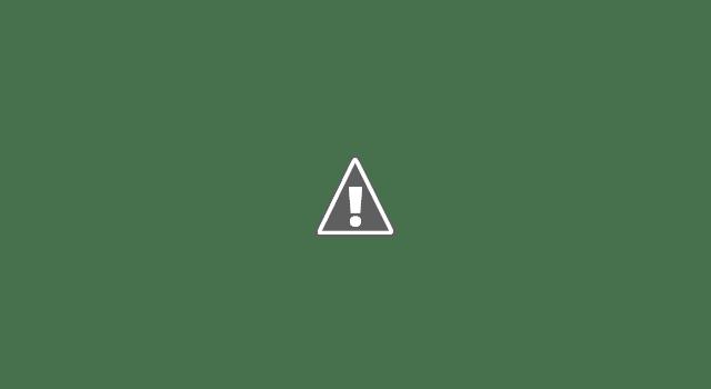 Современные трамваи в Берне