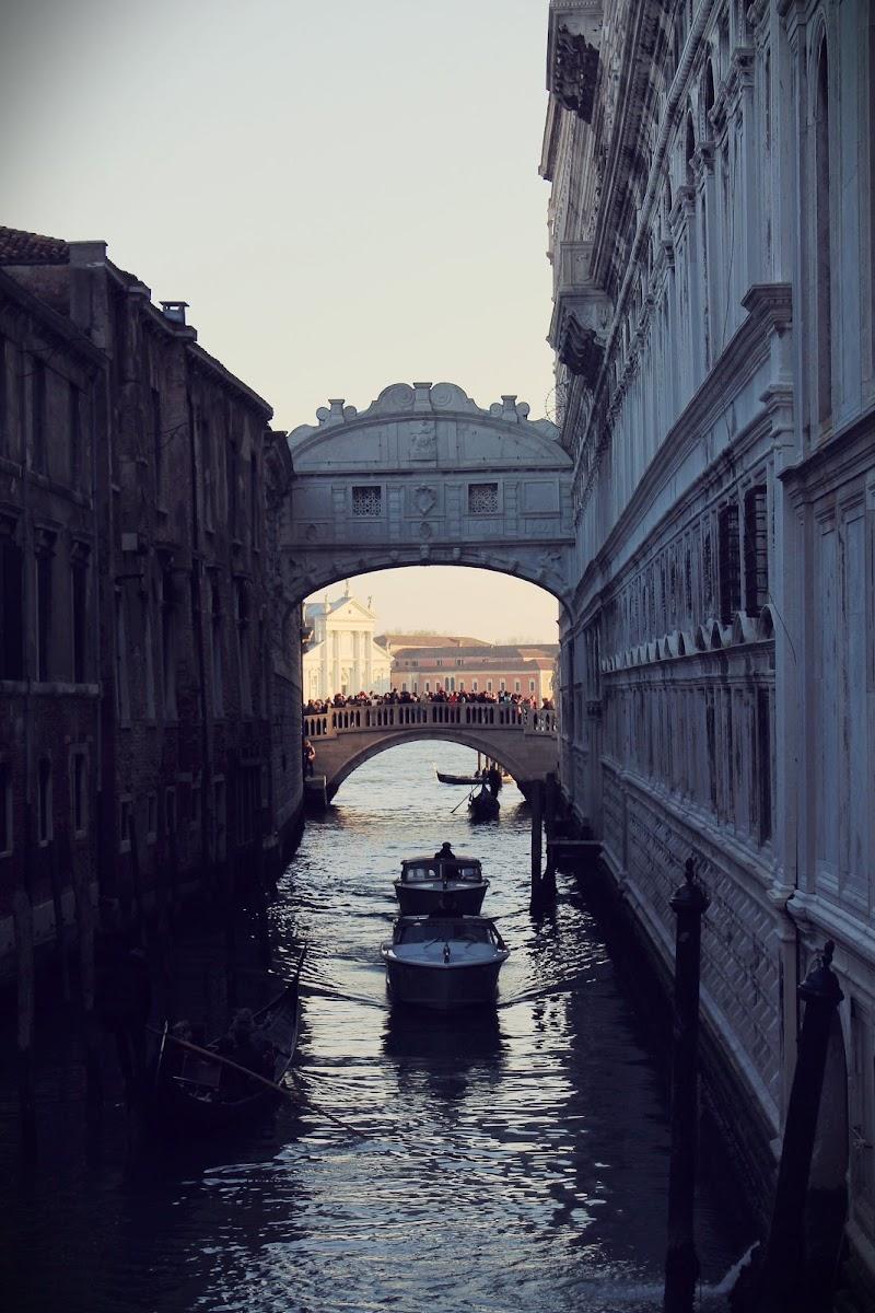 Venezia di Elianamorale