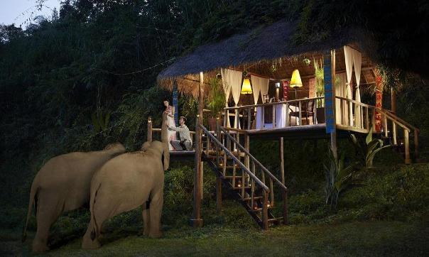 Anantara Golden Triangle Elephant Camp & Resort9.jpg