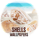 Wallpapers with shells for PC-Windows 7,8,10 and Mac