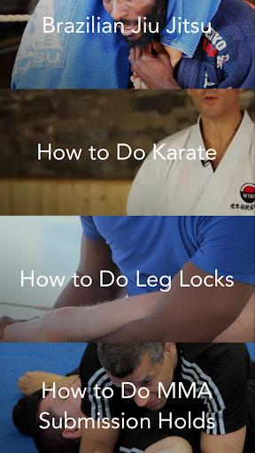 Mixed Martial Arts Master Pro
