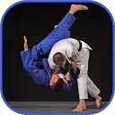 App Download Judo in brief Install Latest APK downloader