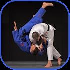 Judo in brief icon