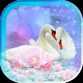 Swans Magic live wallpaper