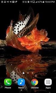 Leaf Butterfly Live Wallpaper - náhled