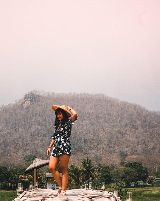 sawah di mae hong son thailand utara