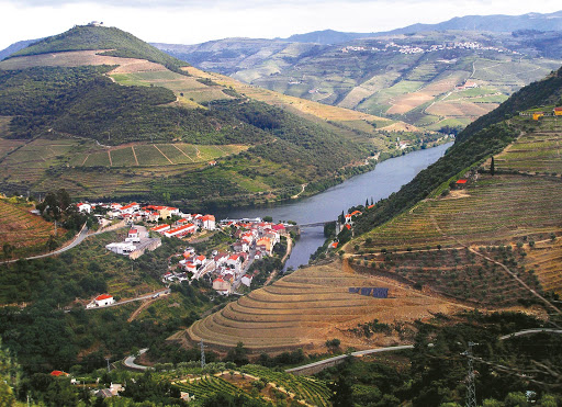 douro-river-pinhao-countryside.jpg - View of the gorgeous countryside in Pinhao, Portugal, along the Douro River.