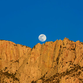 Catalina Moon by Jim O'Neill - Landscapes Mountains & Hills ( catalina mountains, tucson, full moon, mountains, oro valley, arizona, desert )