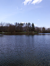 Photo: Our campsite (Upper Wyandot) from the other side of Lake Martin