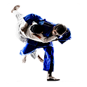 Jiu Jitsu Guide icon