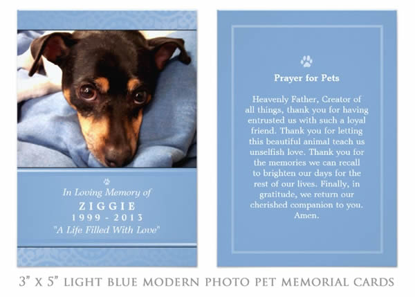 Pet Memorial Card - Photo