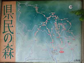 県民の森地図(トイレ付近は自然観察ゾーン…)